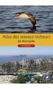 las des oiseaux nicheurs de Marseille